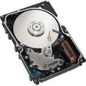 Seagate Cheetah 36,4GB 10K Fibre Channel Harddisk ST336605FC, brukte