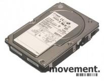 Harddisk for server: Seagate Cheetah ST336607LW, 36GB/10K, brukte