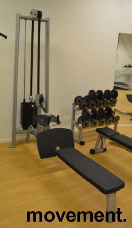 Gym 80 Sygnum sittende roing / long pulley, pent brukt bilde 1