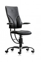 Ergonomisk, ryggvennlig kontorstol fra Spinalis, modell Apollo med Renna trekk i sort, pent brukt