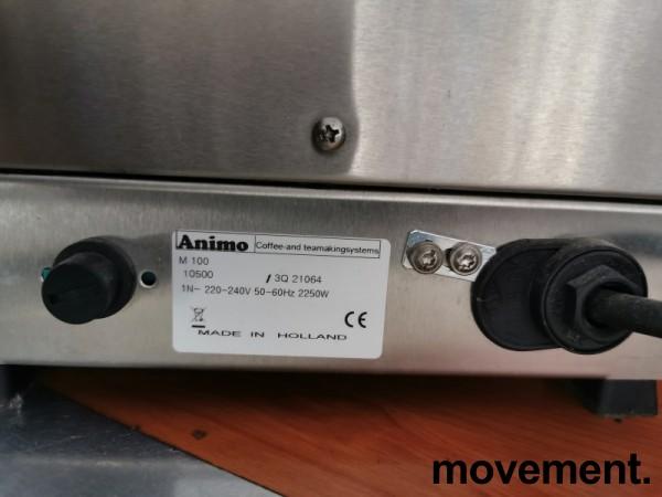 Animo M100 kaffetrakter for proff-bruk, manuell vannpåfylling, vanlig 1fas stikkontakt, brukt bilde 3